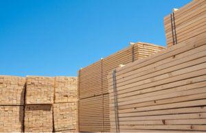 木材利用ポイント